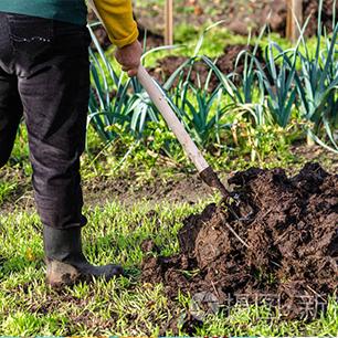 Organic Fertilizer Line